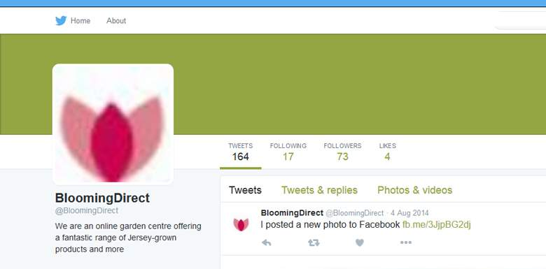 Blooming Direct on Twitter