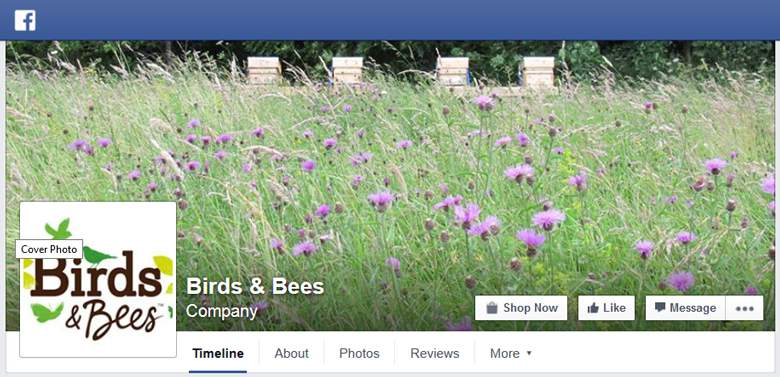 Birds and Bees on Facebook