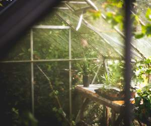 Greenhouse by Harrod Horticultural