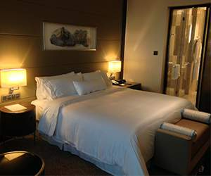 Hotels room Melia