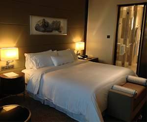 Hotels room Melia