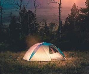 Tent by Millets