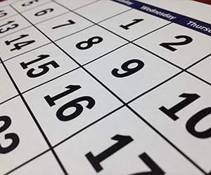Wall calendar by Calendar Club